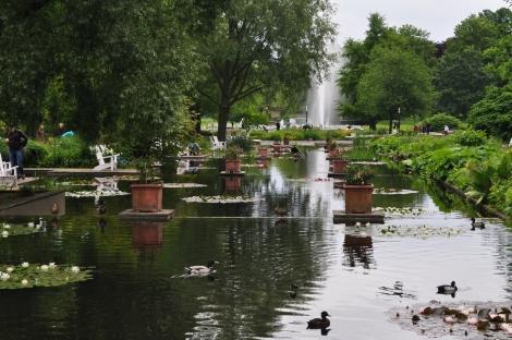 Jardin botanique - Hambourg